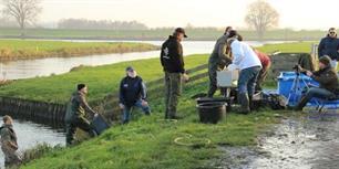 Sportvissers gaan 1750 kg karpers uitzetten op De Benedenrivieren (video)