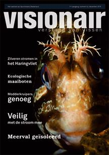 Visionair no. 42 is verschenen