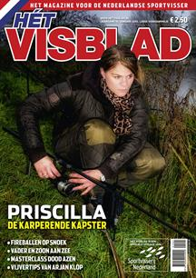 Hét Visblad online januari 2015 (video)