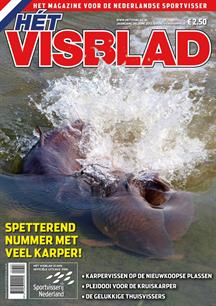 Hét Visblad online juni 2013 (video)