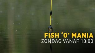 "Nederland ""best of the rest"" bij Fish O Mania 2015"