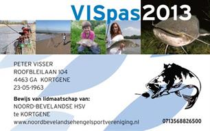 Preview: VISpas 2013