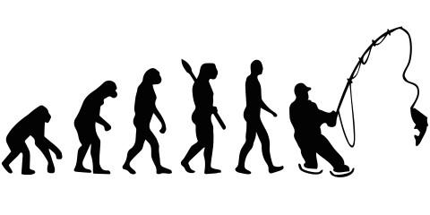 Sticker Evolutie naar hengelaar groot (60 x 30 cm)