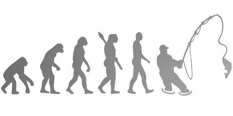 Sticker Evolutie naar hengelaar klein (20 x 10 cm)
