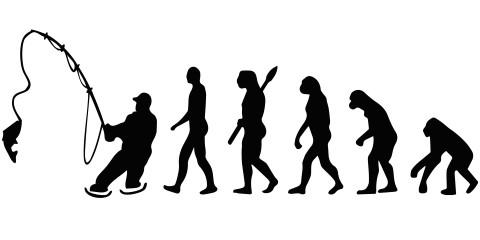 Sticker Evolutie naar hengelaar spiegelbeeld (60 x 30 cm)