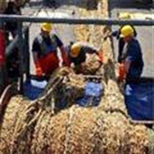 The End of the Line: vis straks op (video)