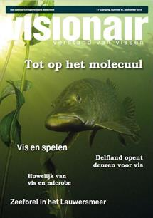 Visionair 41 is uit!