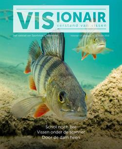 Visionair no. 51 is verschenen