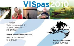 VISpas 2010 preview
